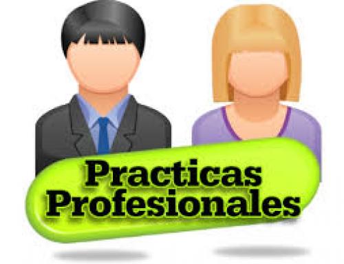 Socia interesada en prácticas y trabajo