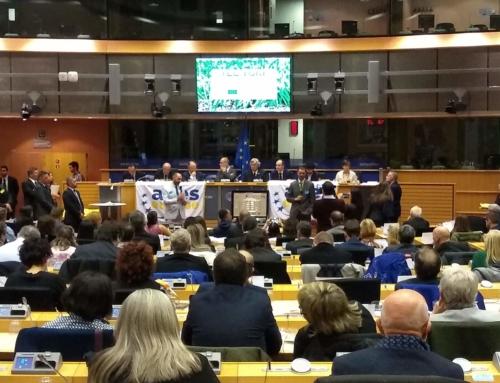 TELETURF: presentación oficial en Bruselas